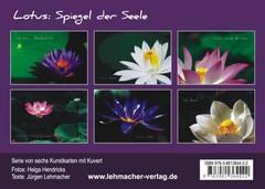 lotus spiegel der seele kunstkarten synergia auslieferung. Black Bedroom Furniture Sets. Home Design Ideas